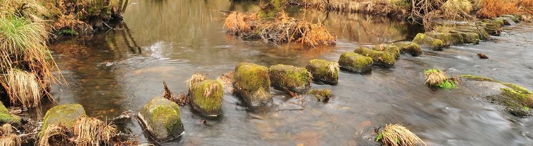 Pasos en un río